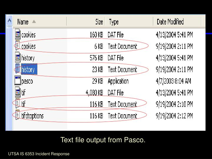 Text file output from Pasco.