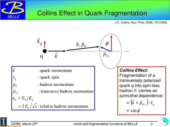Collins Effect in Quark Fragmentation