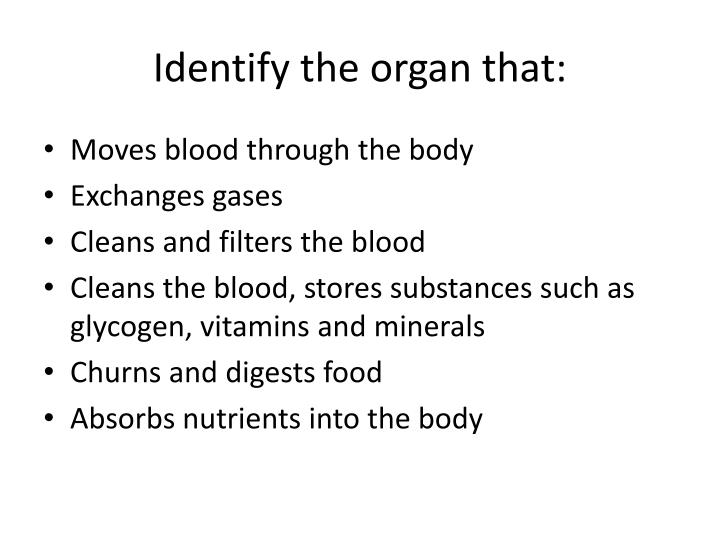 Identify the organ that: