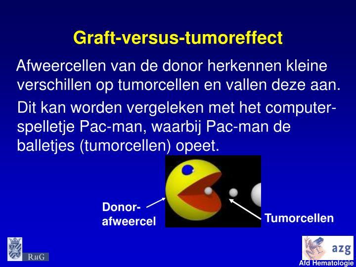 Graft-versus-tumoreffect