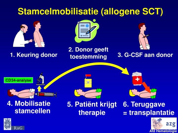 Stamcelmobilisatie (allogene SCT)