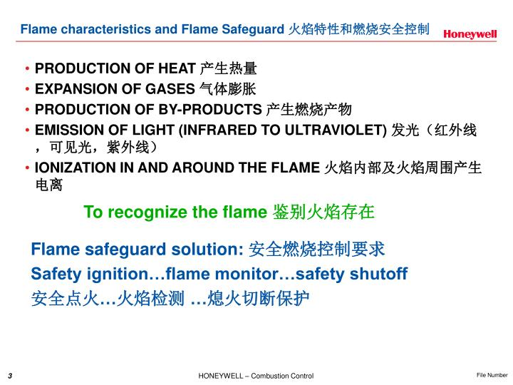Flame characteristics and flame safeguard