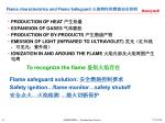 flame characteristics and flame safeguard