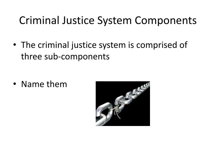 Criminal Justice System Components