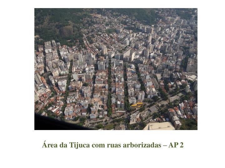 Área da Tijuca com ruas arborizadas – AP 2