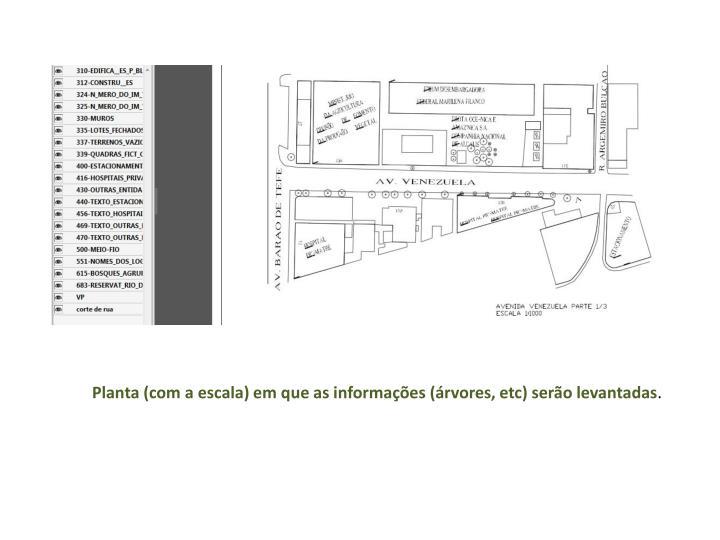 Planta (com a escala) em que as informações (árvores, etc) serão levantadas