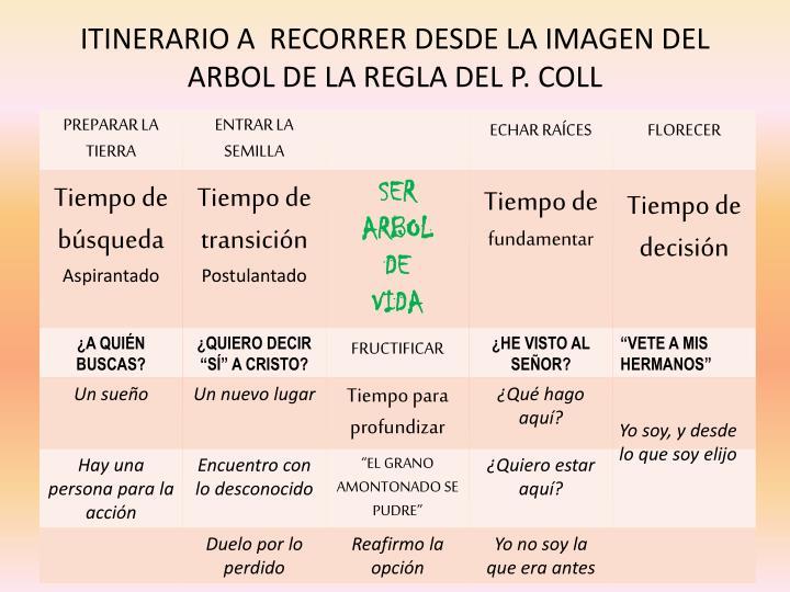 ITINERARIO A  RECORRER DESDE LA IMAGEN DEL ARBOL DE LA REGLA DEL P. COLL