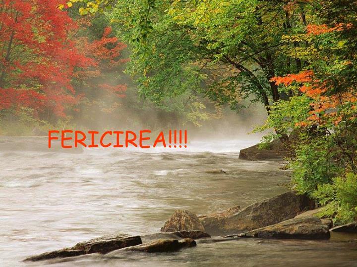 FERICIREA!!!!