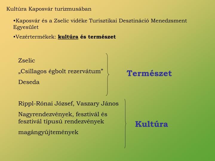 Kultúra Kaposvár turizmusában