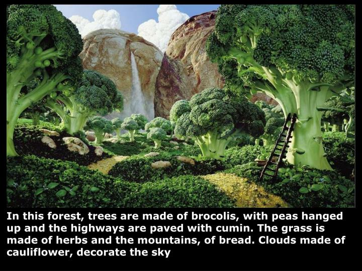 In this forest, trees are made of brocolis, with peas hanged up and the highways are paved with cumi...
