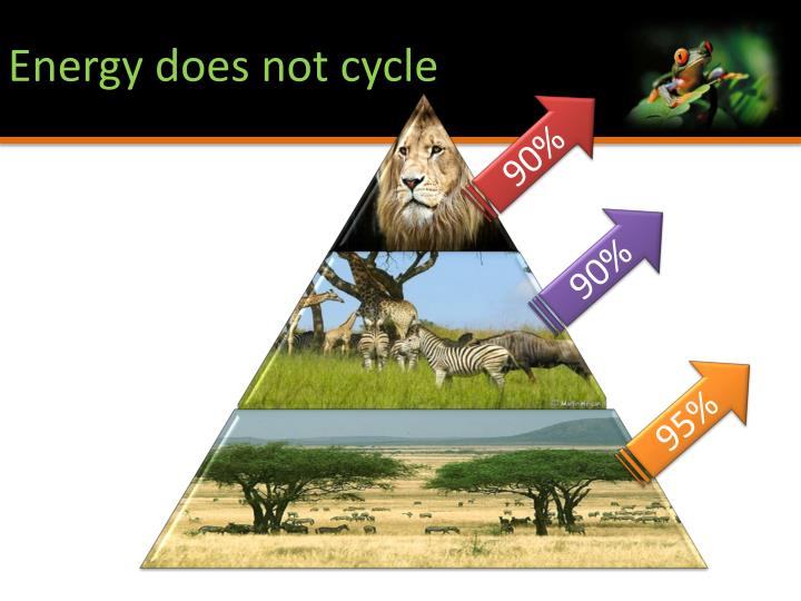 Energy does not cycle