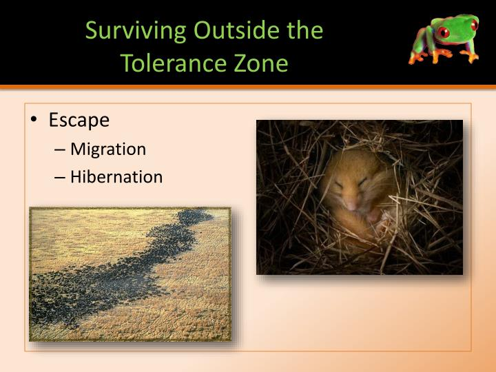 Surviving Outside the Tolerance Zone