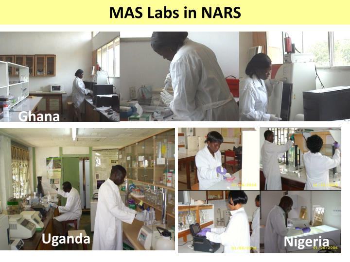 MAS Labs in NARS