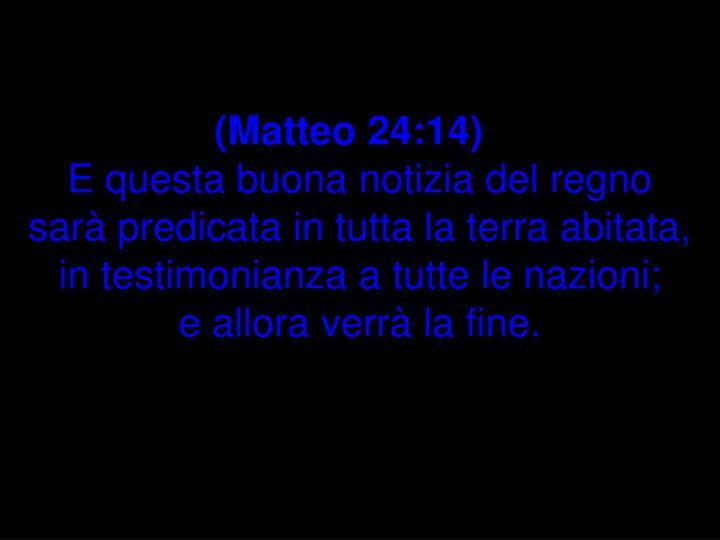 (Matteo