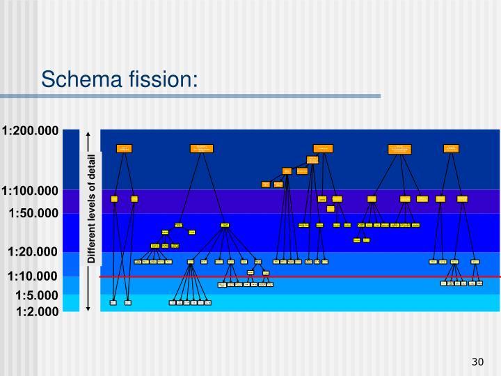 Schema fission