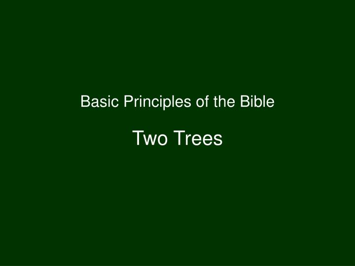 Basic Principles of the Bible