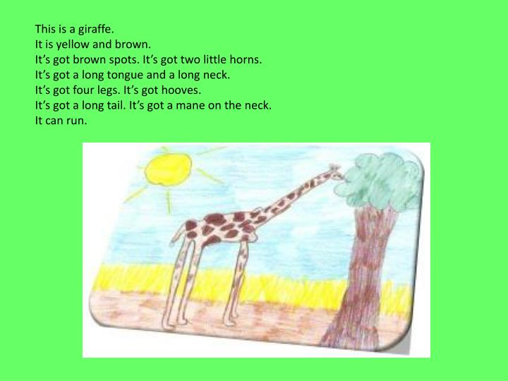 This is a giraffe.