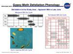 gypsy moth defoliation phenology