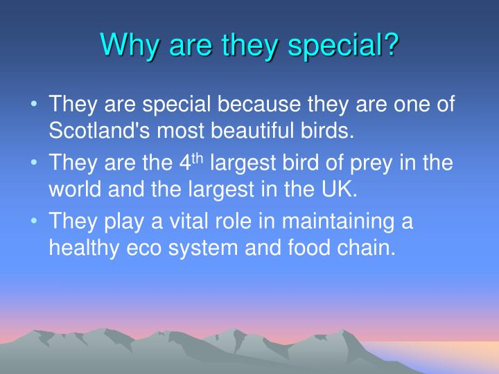 Why are they special?