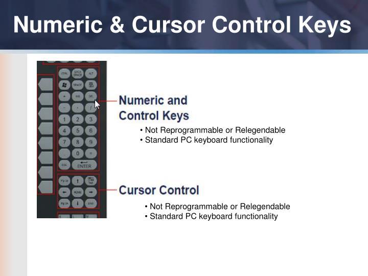 Numeric & Cursor Control Keys