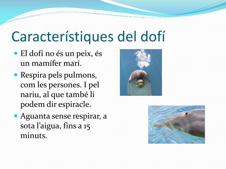 Característiques del dofí