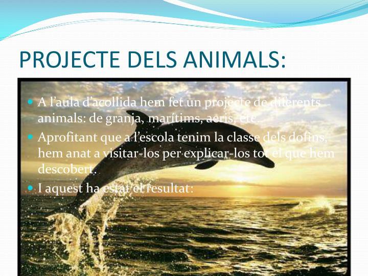 PROJECTE DELS ANIMALS: