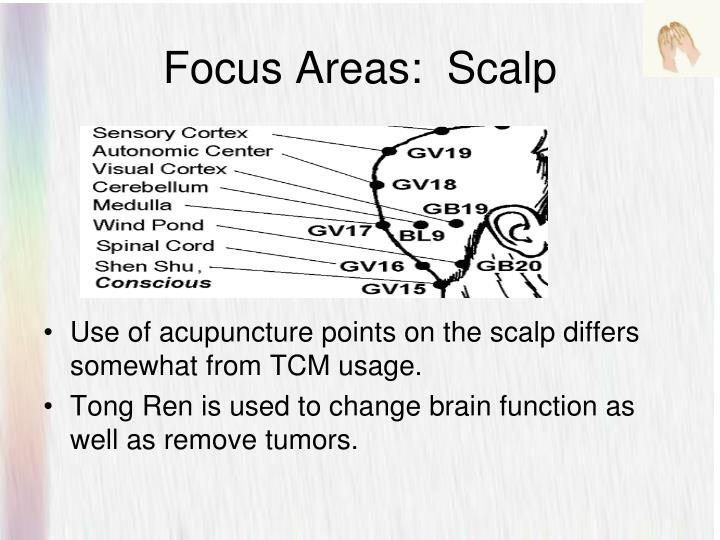 Focus Areas:  Scalp