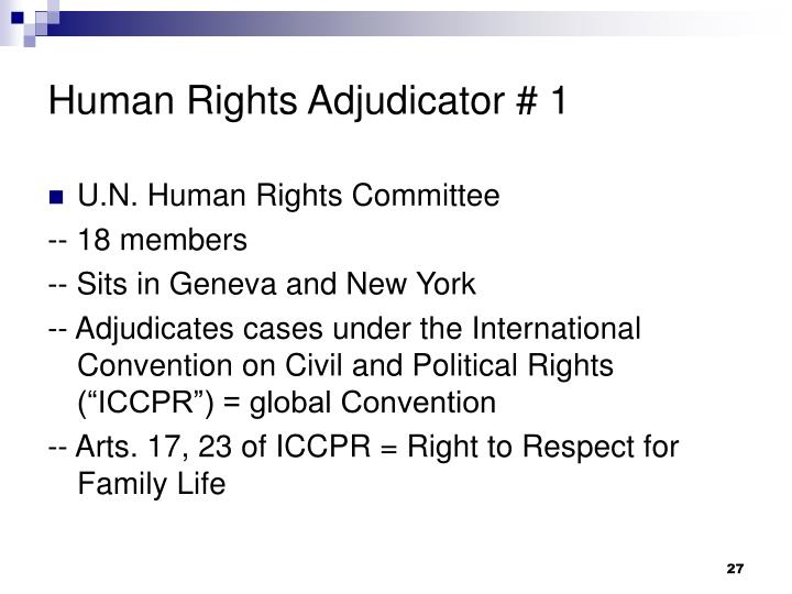 Human Rights Adjudicator # 1