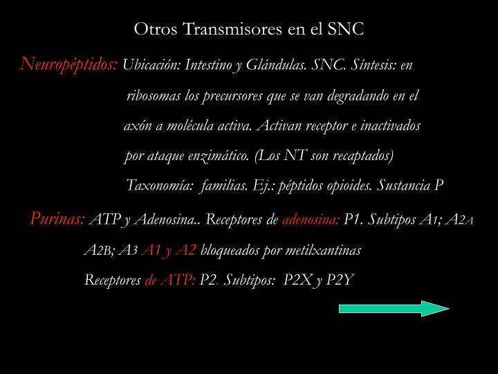 Otros Transmisores en el SNC