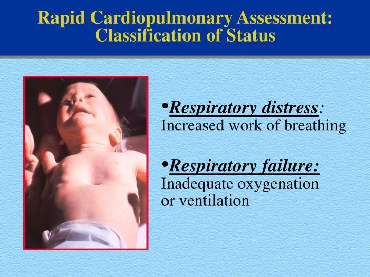 Rapid Cardiopulmonary Assessment: