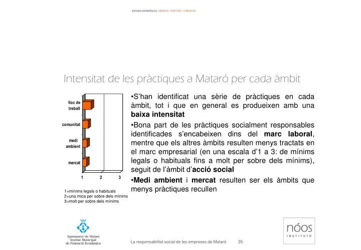 Intensitat de les pràctiques a Mataró per cada àmbit