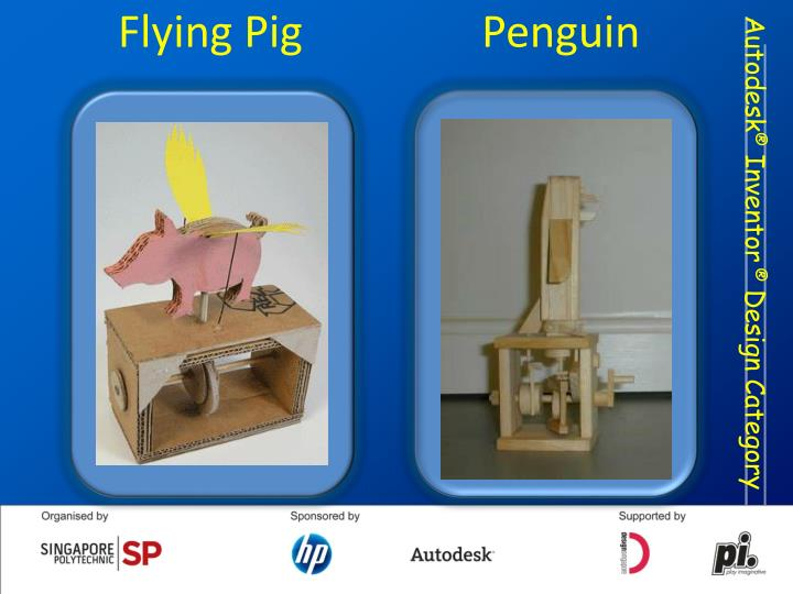 Flying Pig       Penguin