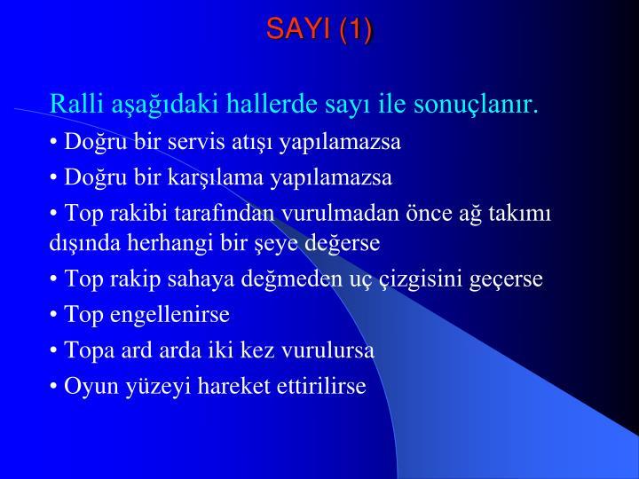 SAYI (1)