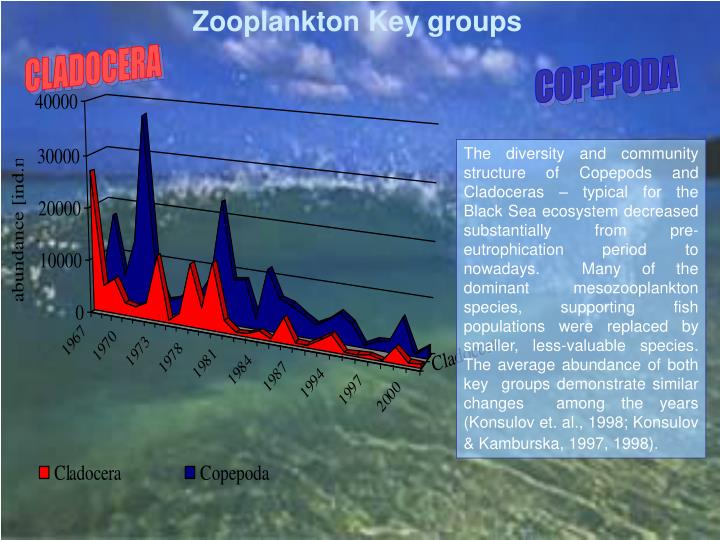 Zooplankton Key groups