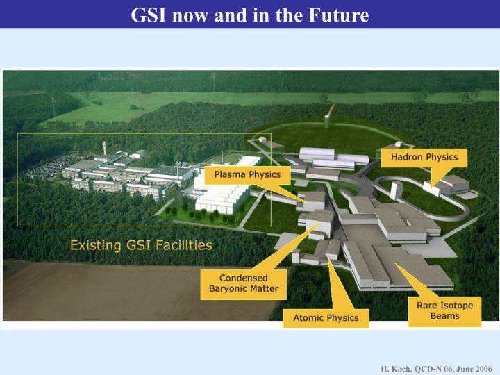 GSI now and in the Future