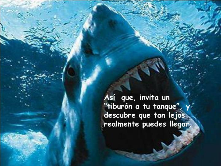 """Así  que, invita un """"tiburón a tu tanque"""", y descubre que tan lejos realmente puedes llegar."""