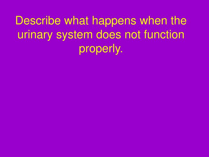 Describe what happens when the urinary system does not function properly.