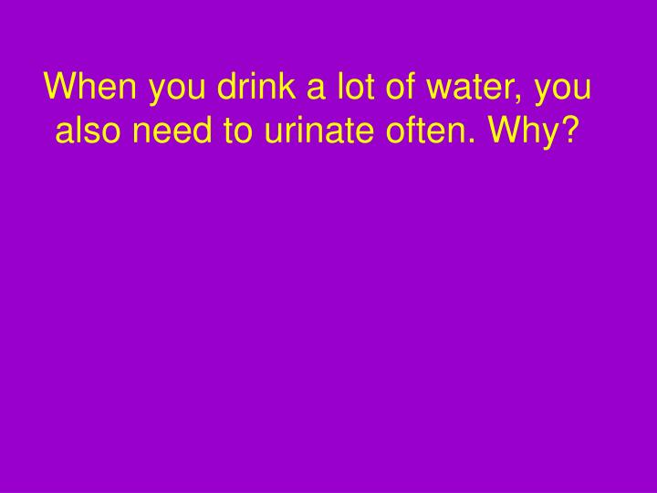 When you drink a lot of water, you also need to urinate often. Why?