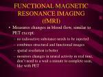 functional magnetic resonance imaging fmri