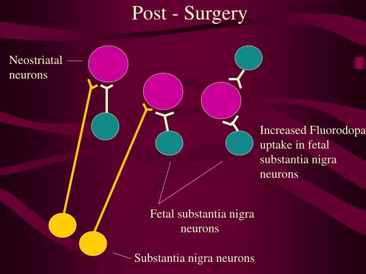 Post - Surgery
