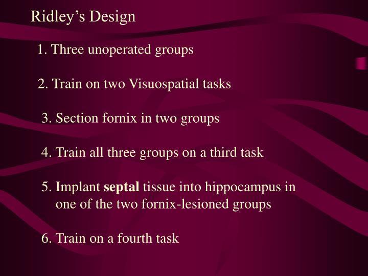 Ridley's Design