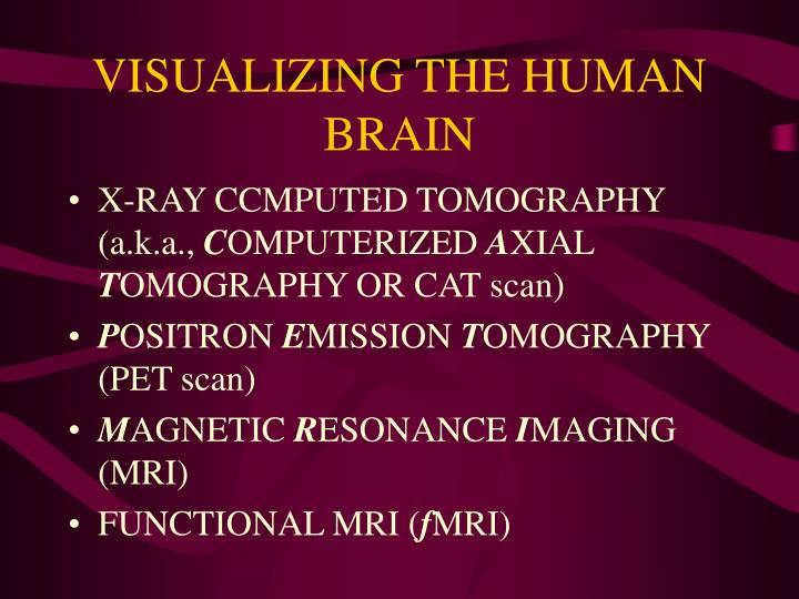 VISUALIZING THE HUMAN BRAIN
