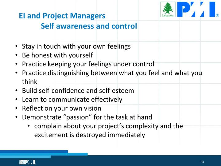 EI and Project Managers