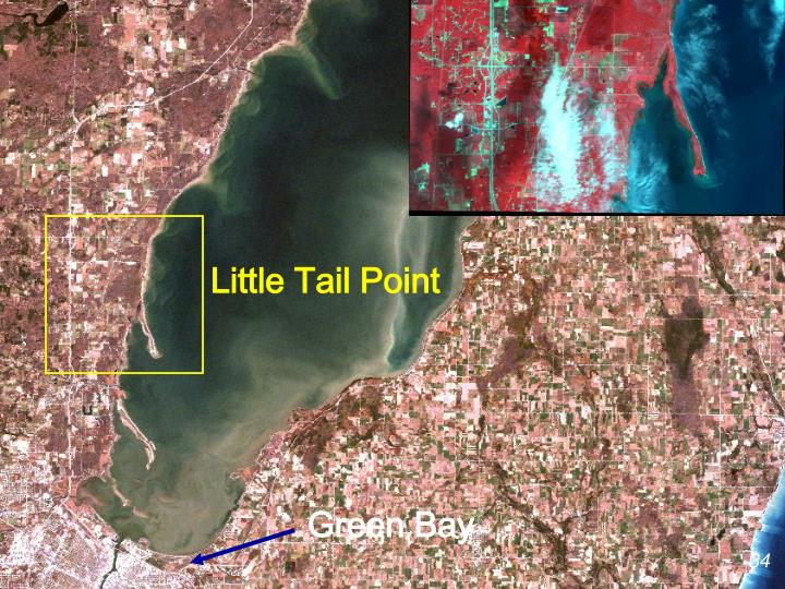 Little Tail Point