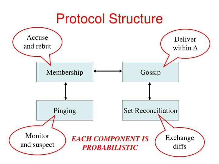 Protocol Structure