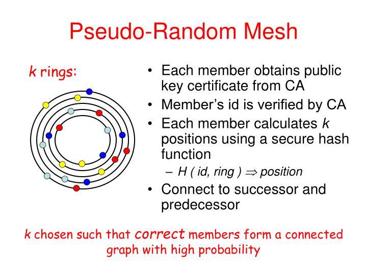 Pseudo-Random Mesh