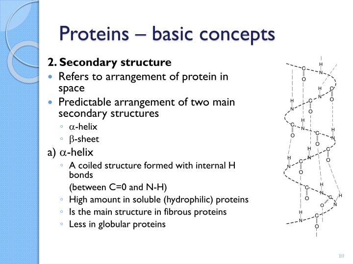 2. Secondary structure