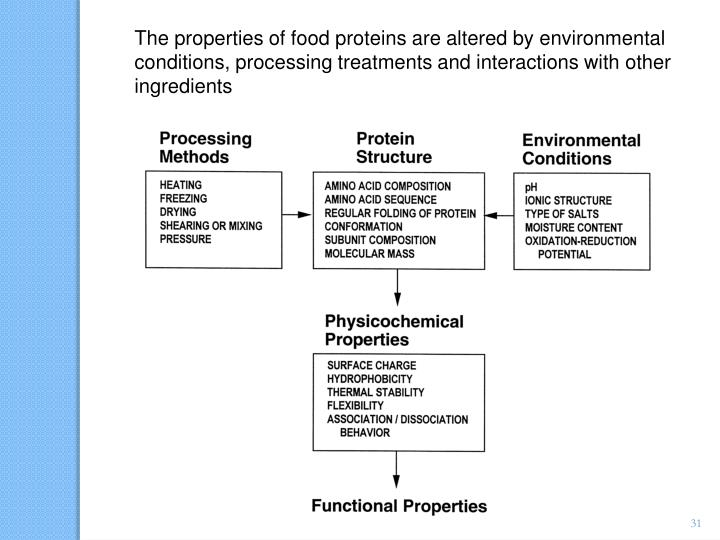 The properties of food proteins are altered by environmental conditions, processing treatments and interactions with other ingredients