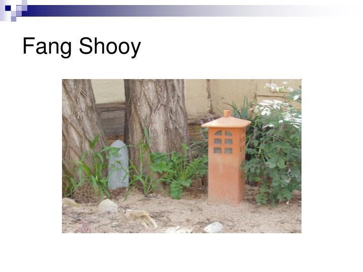 Fang Shooy