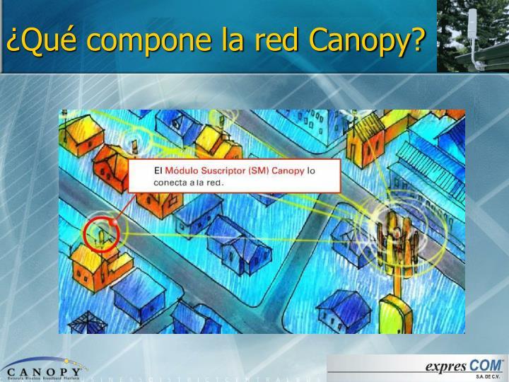 ¿Qué compone la red Canopy?